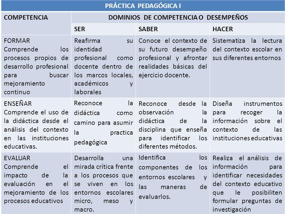 DOMINIOS DE COMPETENCIA O DESEMPEÑOS
