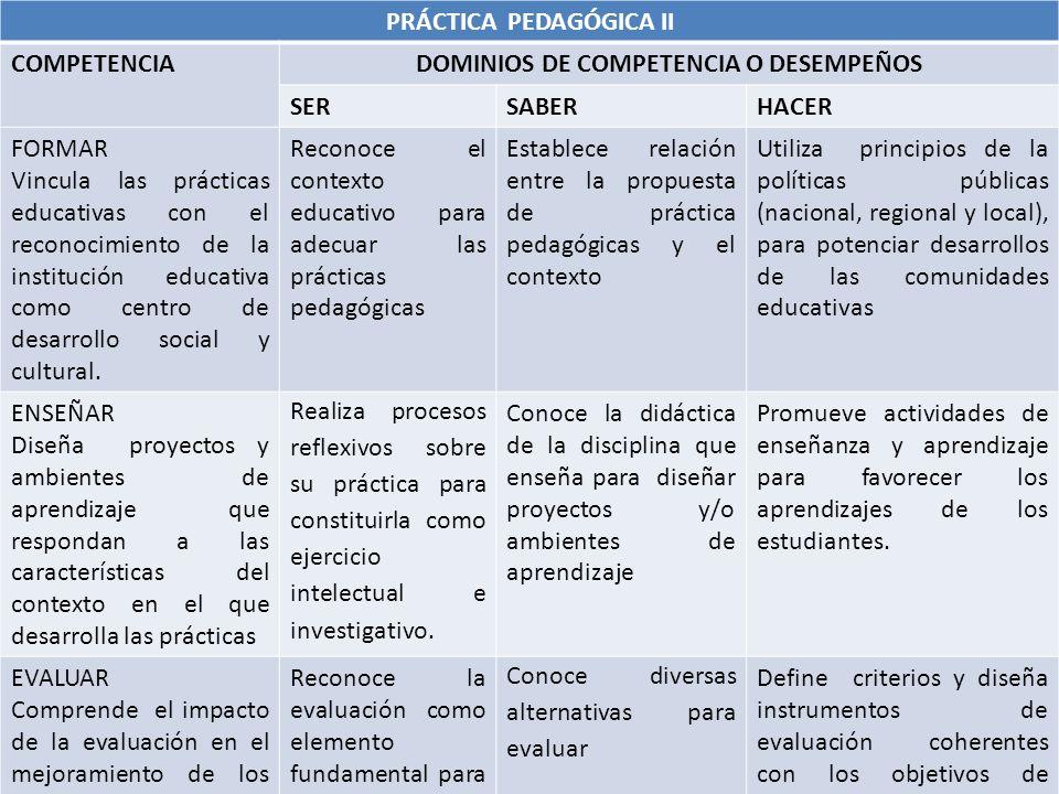 PRÁCTICA PEDAGÓGICA II DOMINIOS DE COMPETENCIA O DESEMPEÑOS