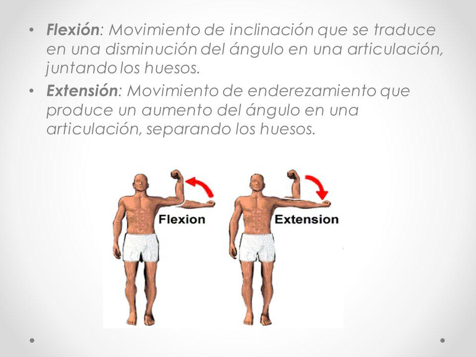Flexión: Movimiento de inclinación que se traduce en una disminución del ángulo en una articulación, juntando los huesos.