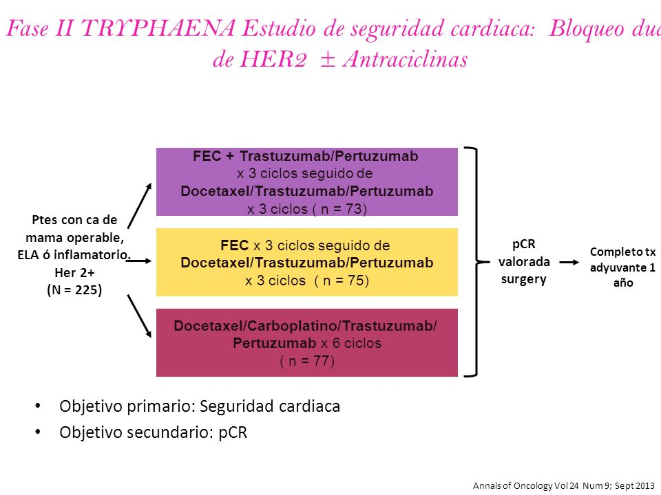 Tryphaena study breast cancer