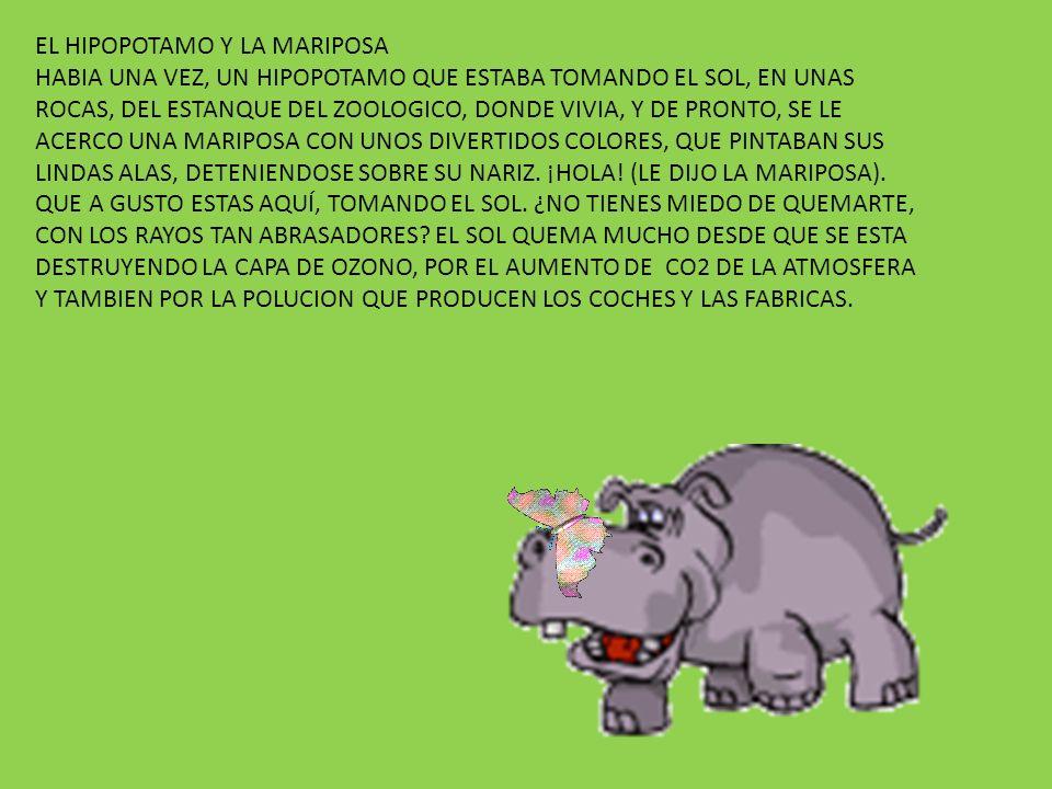 EL HIPOPOTAMO Y LA MARIPOSA