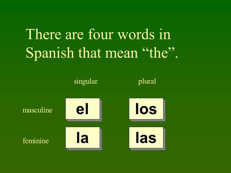 There are four words in Spanish that mean the .