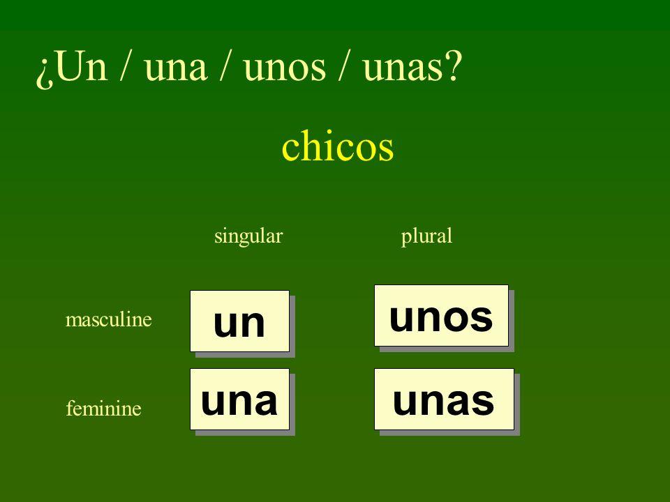 ¿Un / una / unos / unas chicos unos un una unas singular plural