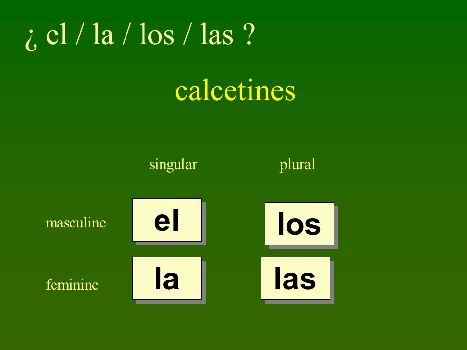 ¿ el / la / los / las calcetines el los la las singular plural