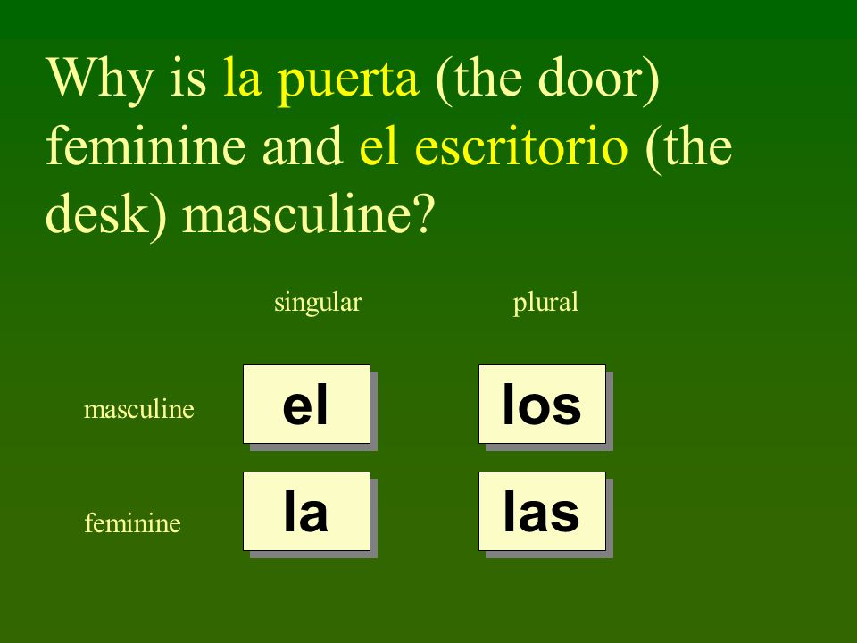 Why is la puerta (the door) feminine and el escritorio (the desk) masculine