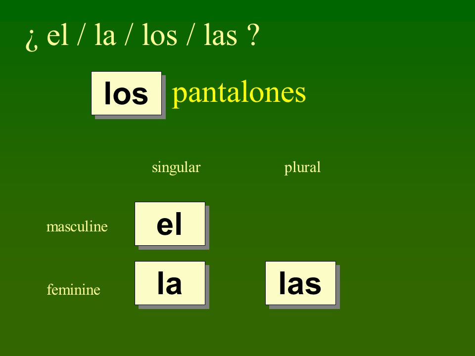 ¿ el / la / los / las pantalones los el la las singular plural