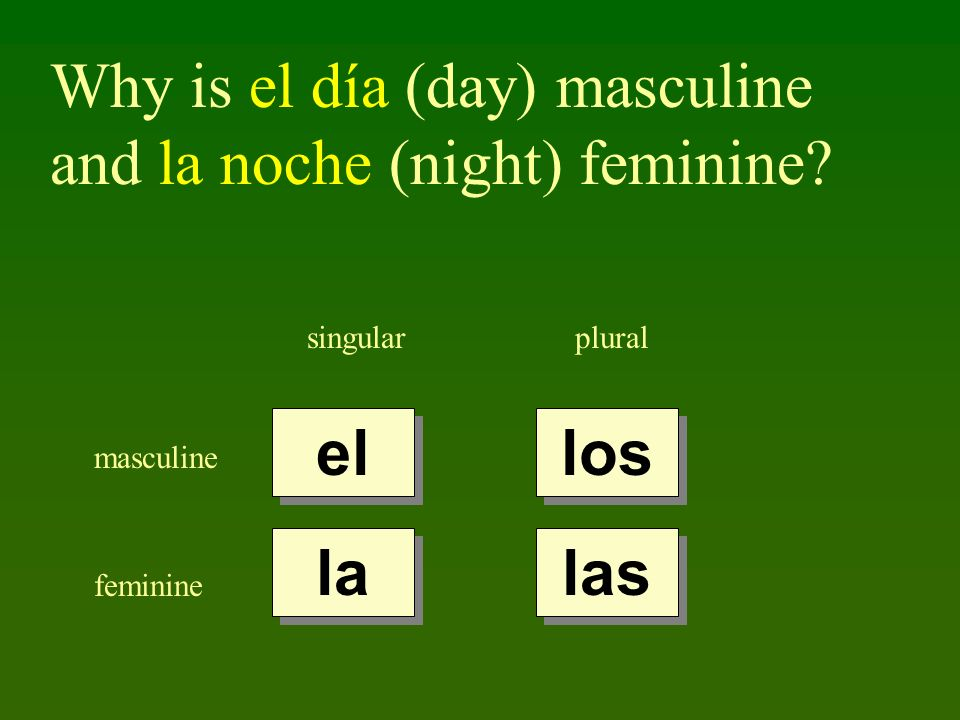Why is el día (day) masculine and la noche (night) feminine