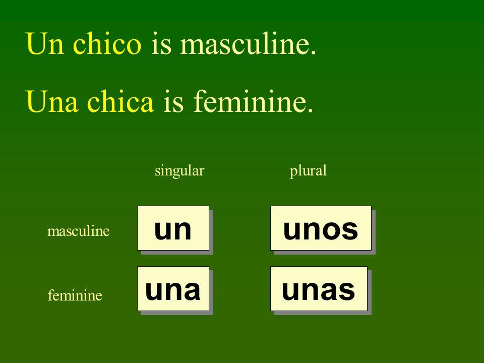 Un chico is masculine. Una chica is feminine. un unos una unas