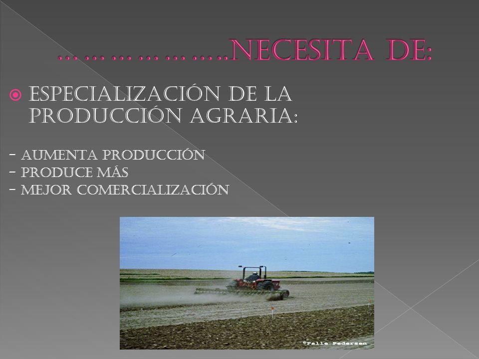 ………………..NECESITA DE: ESPECIALIZACIÓN DE LA PRODUCCIÓN AGRARIA: