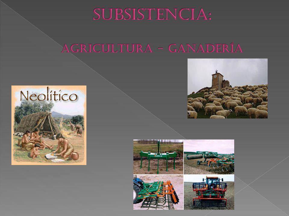SUBSISTENCIA: AGRICULTURA - GANADERÍA