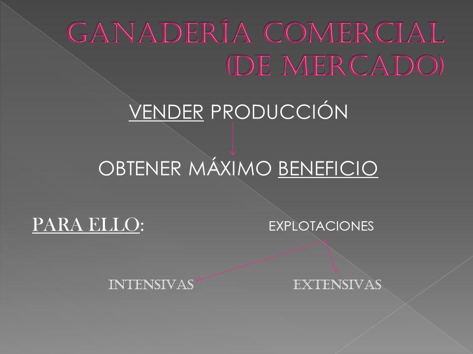 GANADERÍA COMERCIAL (DE MERCADO)