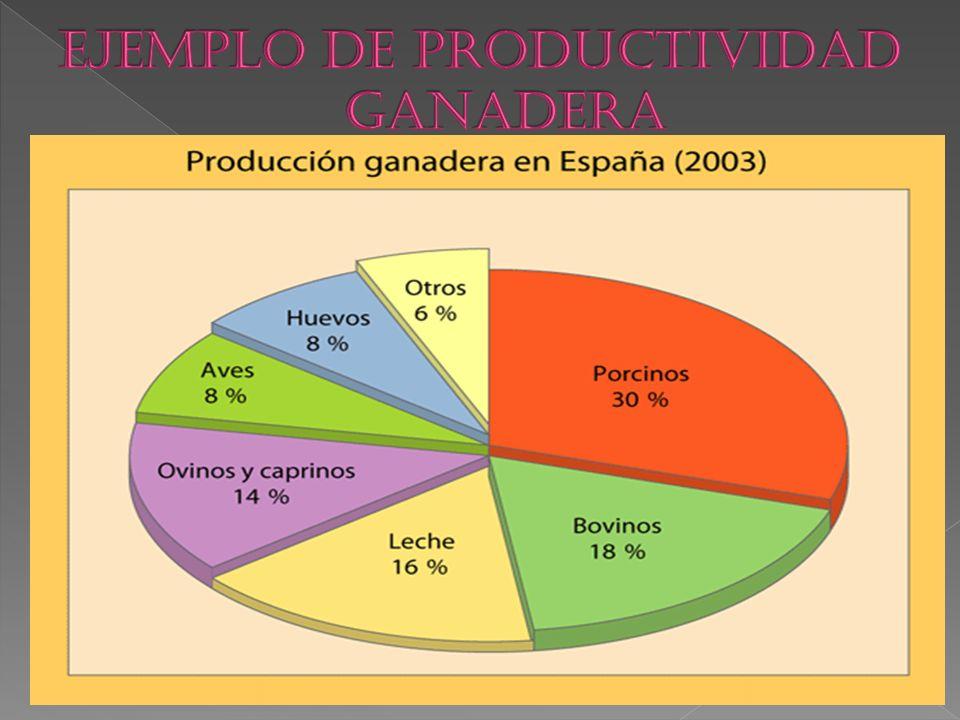 EJEMPLO DE PRODUCTIVIDAD GANADERA