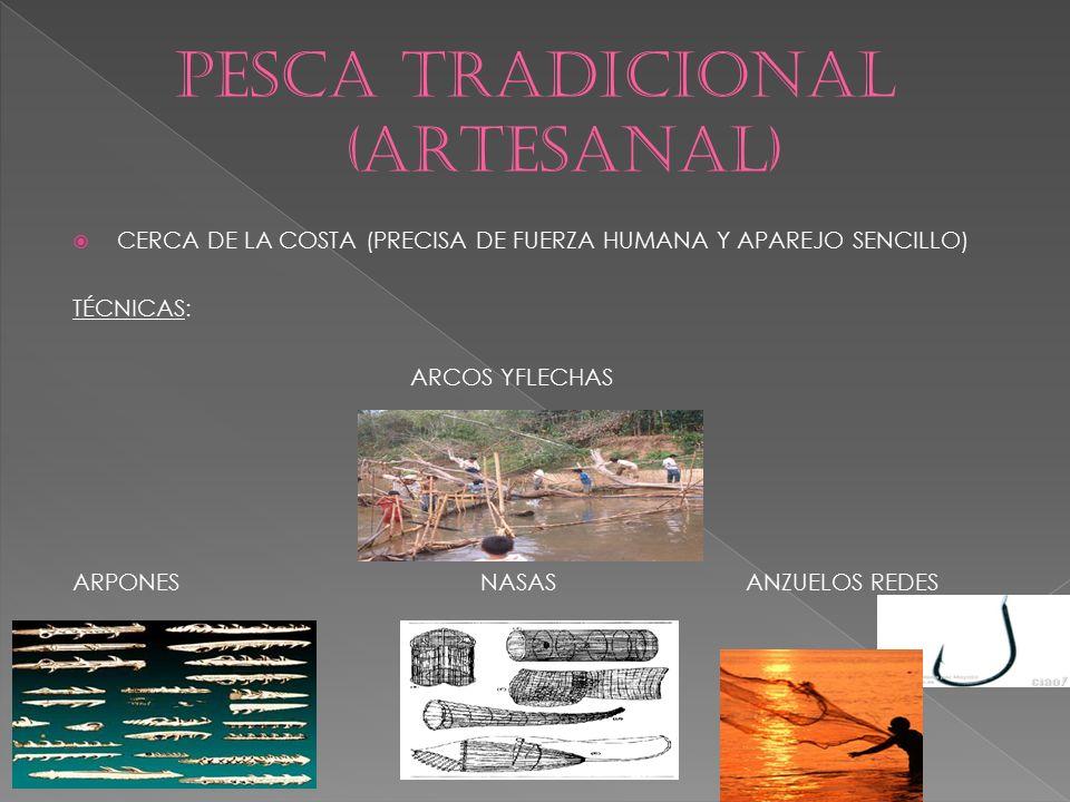 PESCA TRADICIONAL (ARTESANAL)