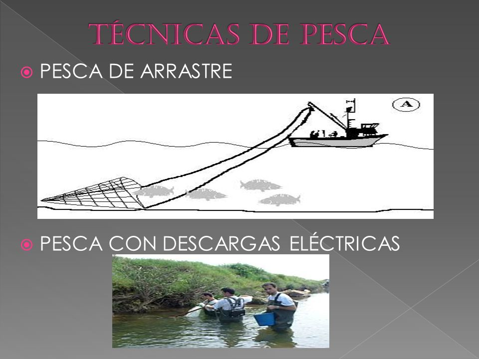 TÉCNICAS DE PESCA PESCA DE ARRASTRE PESCA CON DESCARGAS ELÉCTRICAS