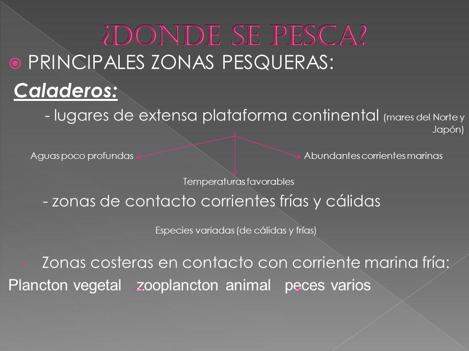 ¿DONDE SE PESCA PRINCIPALES ZONAS PESQUERAS: Caladeros: