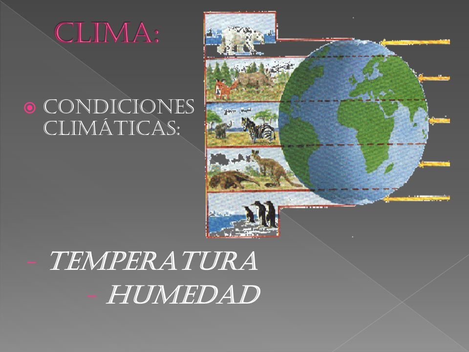CLIMA: CONDICIONES CLIMÁTICAS: TEMPERATURA HUMEDAD