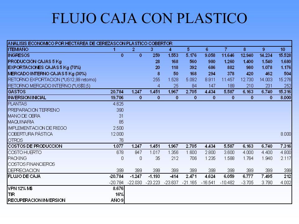 FLUJO CAJA CON PLASTICO