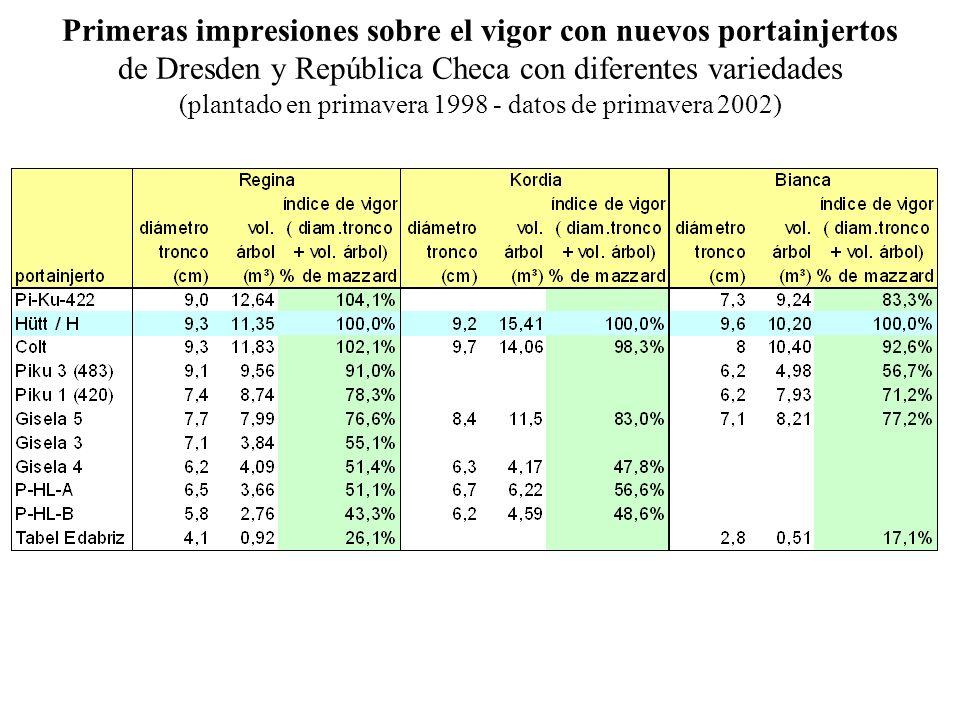 Primeras impresiones sobre el vigor con nuevos portainjertos de Dresden y República Checa con diferentes variedades (plantado en primavera 1998 - datos de primavera 2002)