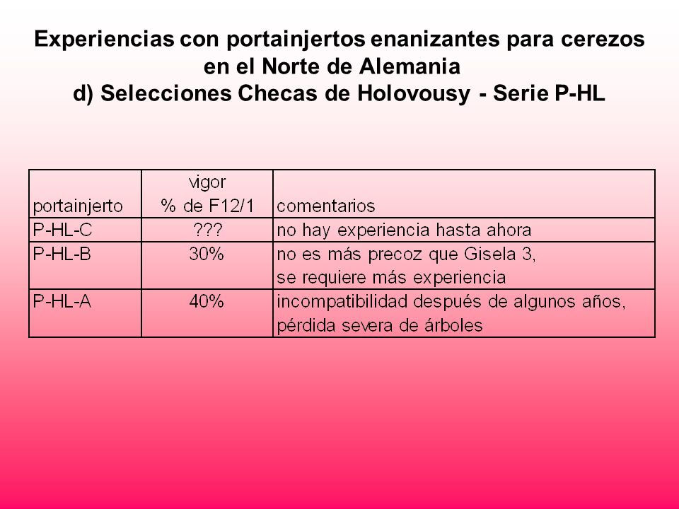 Experiencias con portainjertos enanizantes para cerezos en el Norte de Alemania d) Selecciones Checas de Holovousy - Serie P-HL