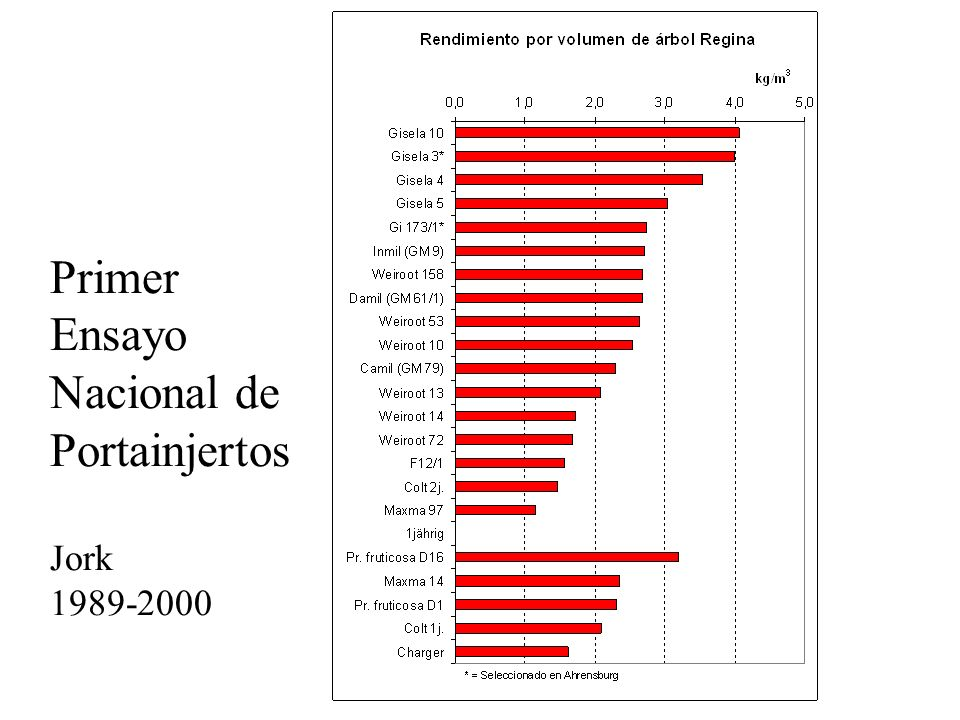 Primer Ensayo Nacional de Portainjertos Jork 1989-2000