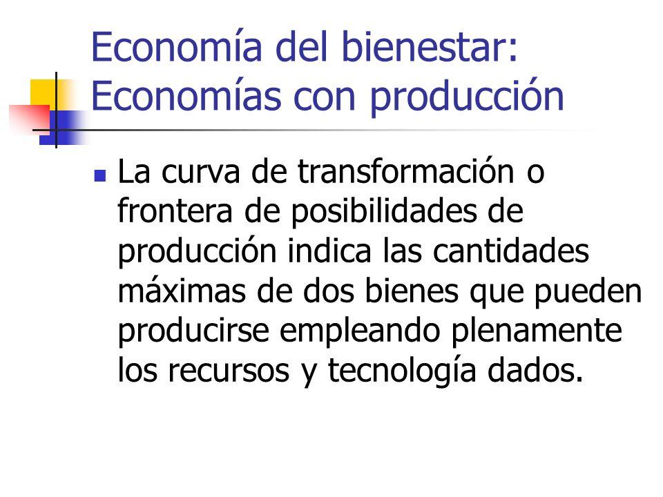 Economía del bienestar: Economías con producción