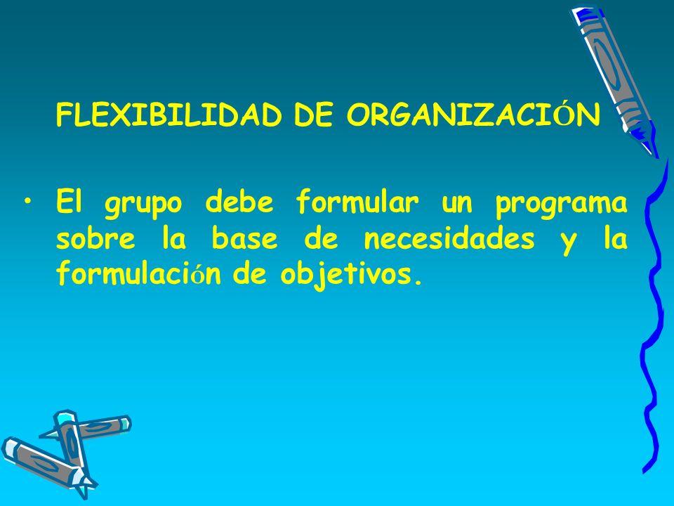 FLEXIBILIDAD DE ORGANIZACIÓN