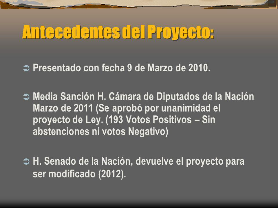Antecedentes del Proyecto: