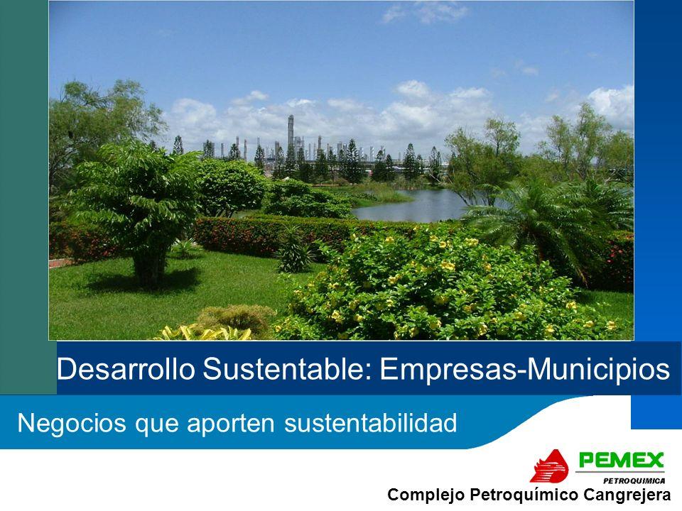 Desarrollo Sustentable: Empresas-Municipios