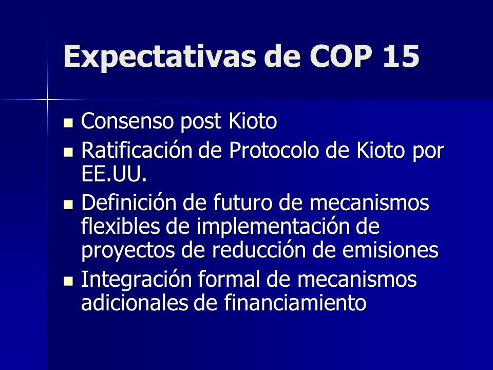 Expectativas de COP 15 Consenso post Kioto