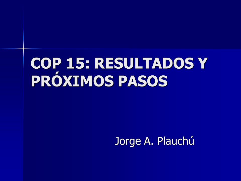 COP 15: RESULTADOS Y PRÓXIMOS PASOS