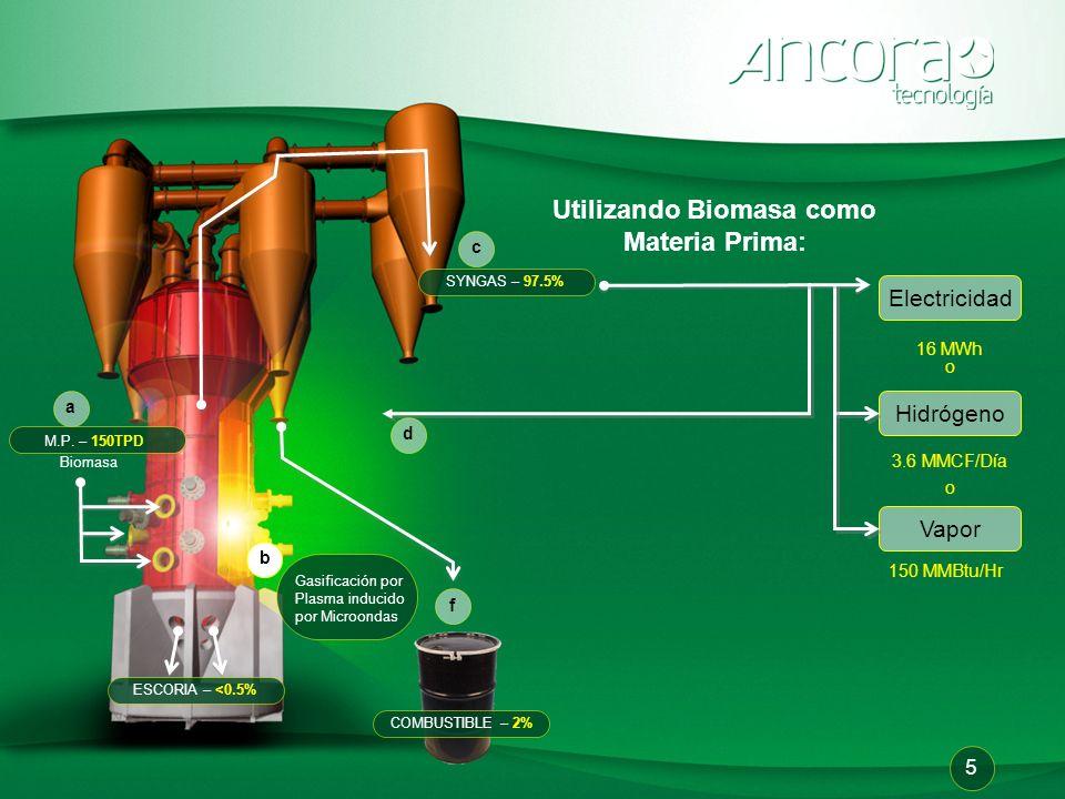 Utilizando Biomasa como Materia Prima: