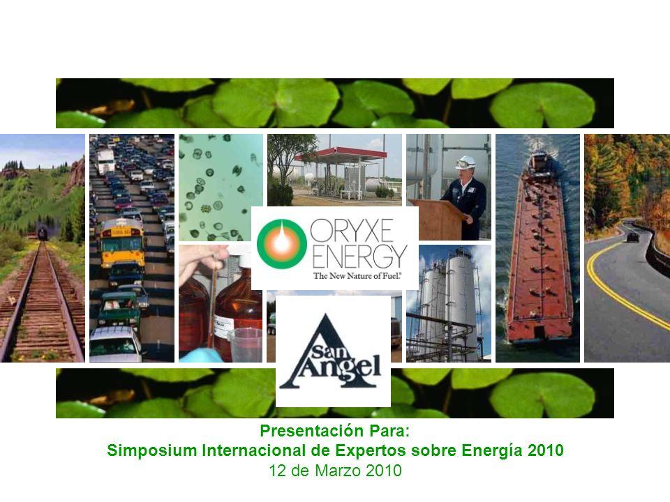 Simposium Internacional de Expertos sobre Energía 2010