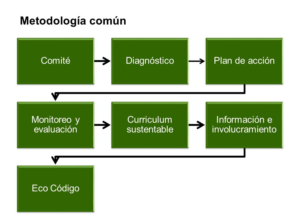 Metodología común Comité Diagnóstico Plan de acción