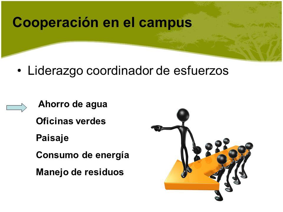 Cooperación en el campus