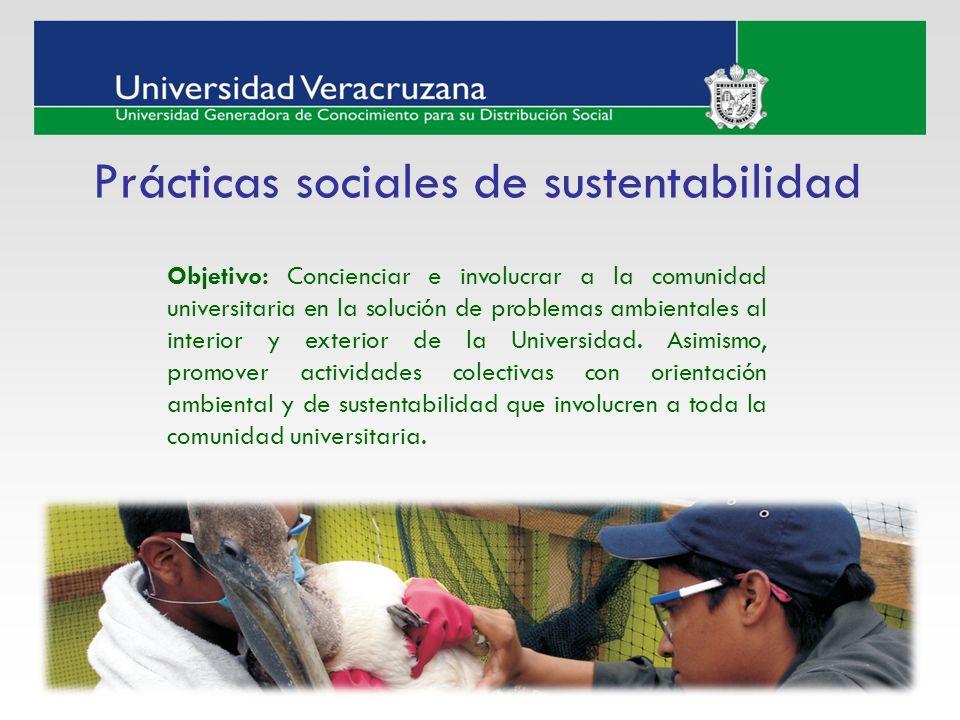Prácticas sociales de sustentabilidad