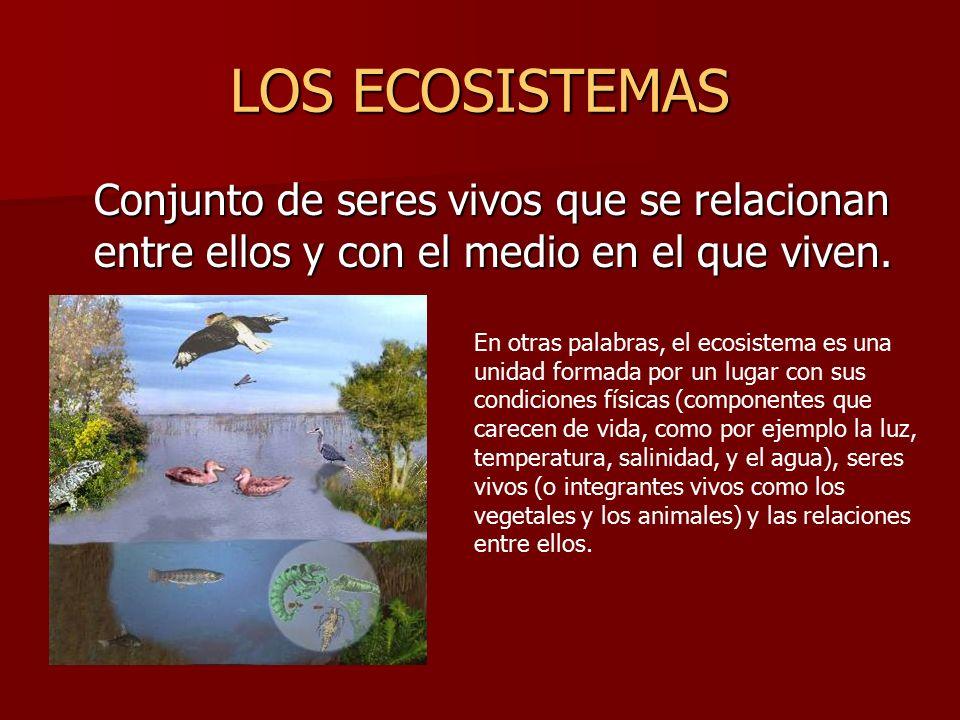 los ecosistemas ppt descargar