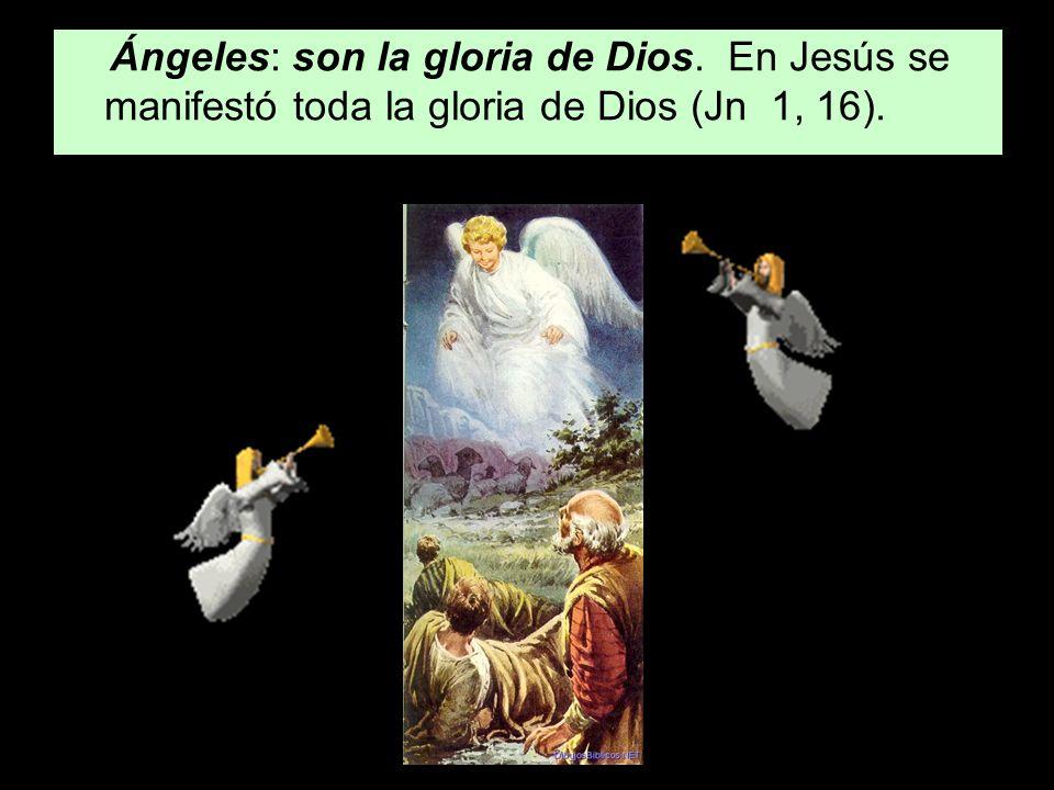 Ángeles: son la gloria de Dios