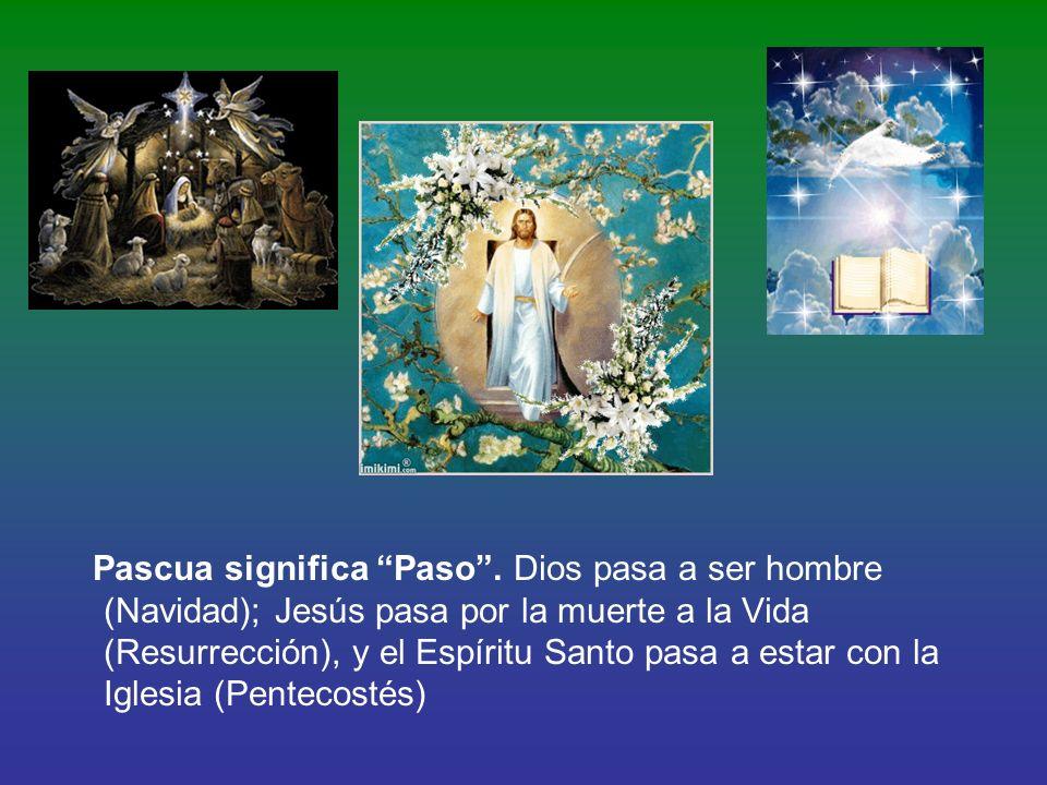 Pascua significa Paso
