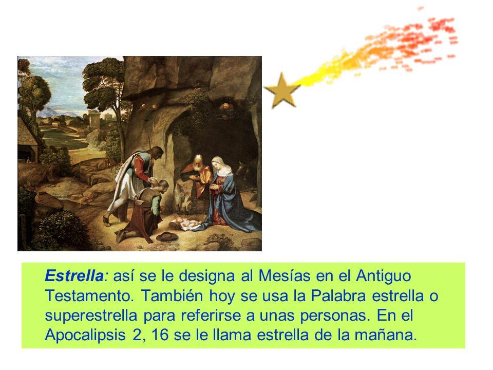 Estrella: así se le designa al Mesías en el Antiguo Testamento