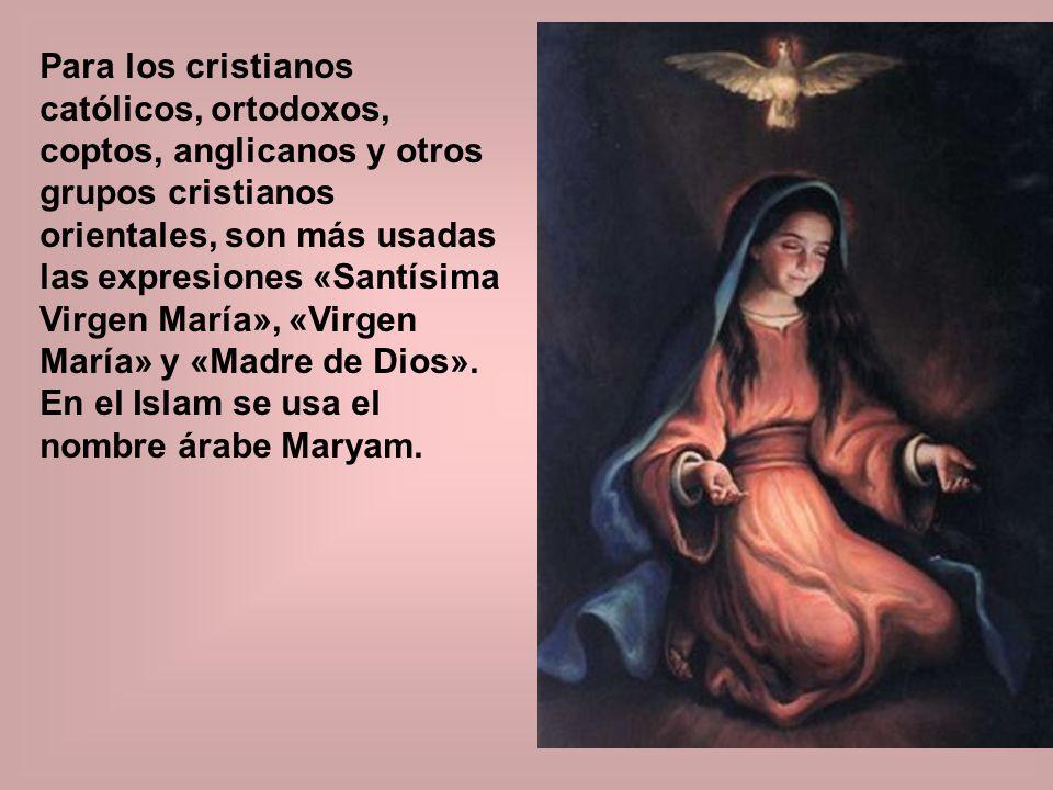 Para los cristianos católicos, ortodoxos, coptos, anglicanos y otros grupos cristianos orientales, son más usadas las expresiones «Santísima Virgen María», «Virgen María» y «Madre de Dios».
