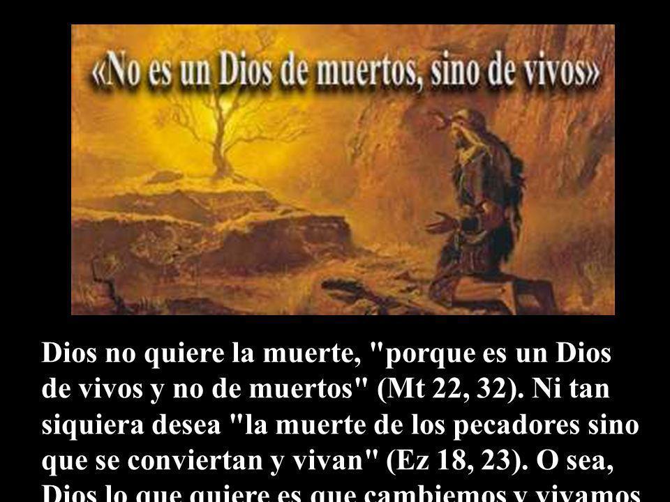 Dios no quiere la muerte, porque es un Dios de vivos y no de muertos (Mt 22, 32).
