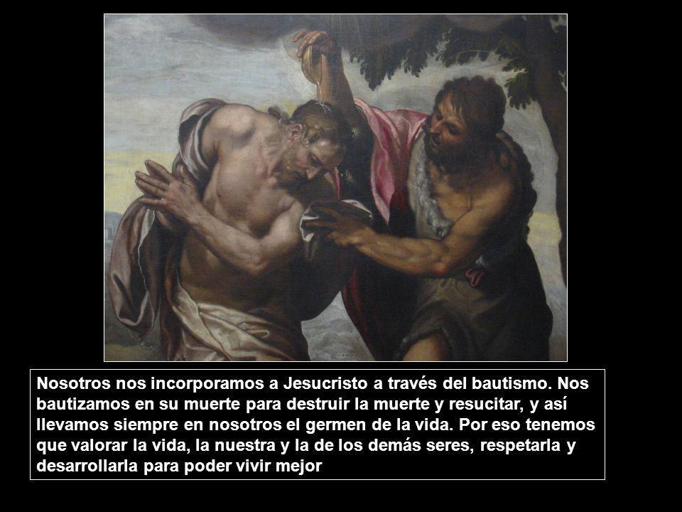 Nosotros nos incorporamos a Jesucristo a través del bautismo