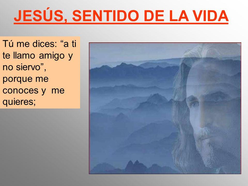 JESÚS, SENTIDO DE LA VIDA