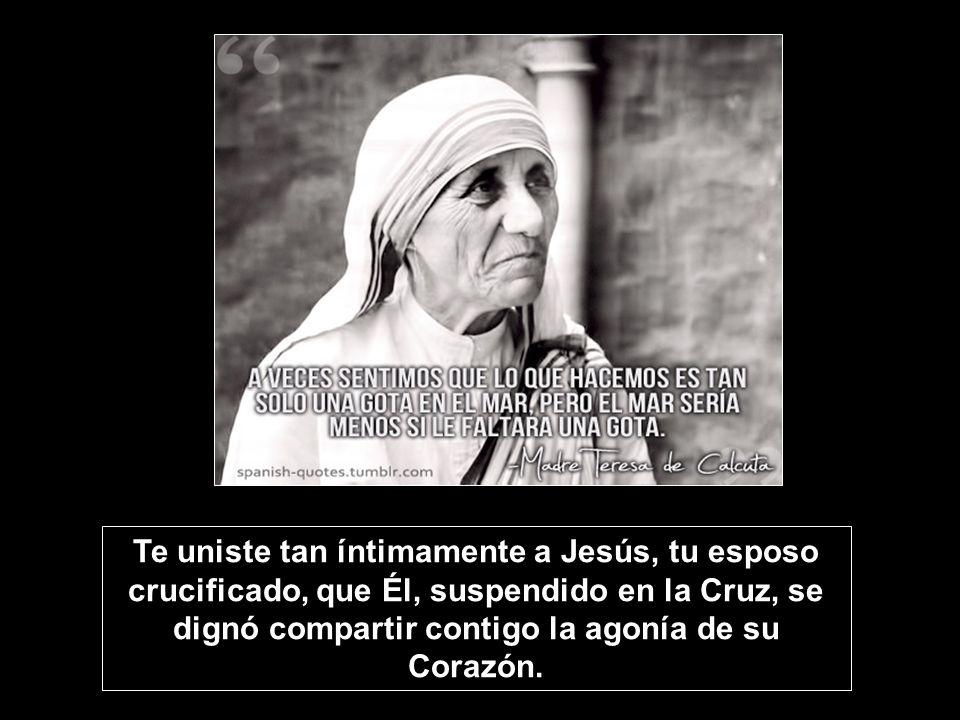 Te uniste tan íntimamente a Jesús, tu esposo crucificado, que Él, suspendido en la Cruz, se dignó compartir contigo la agonía de su Corazón.