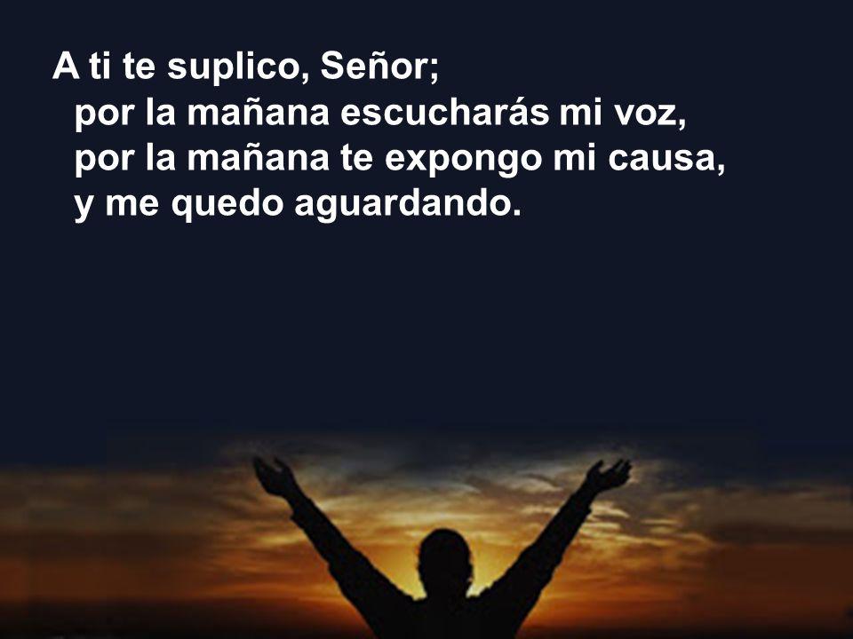 A ti te suplico, Señor;por la mañana escucharás mi voz, por la mañana te expongo mi causa, y me quedo aguardando.