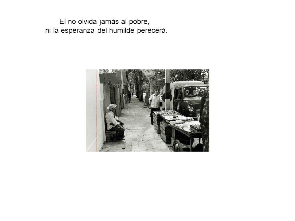 El no olvida jamás al pobre, ni la esperanza del humilde perecerá.