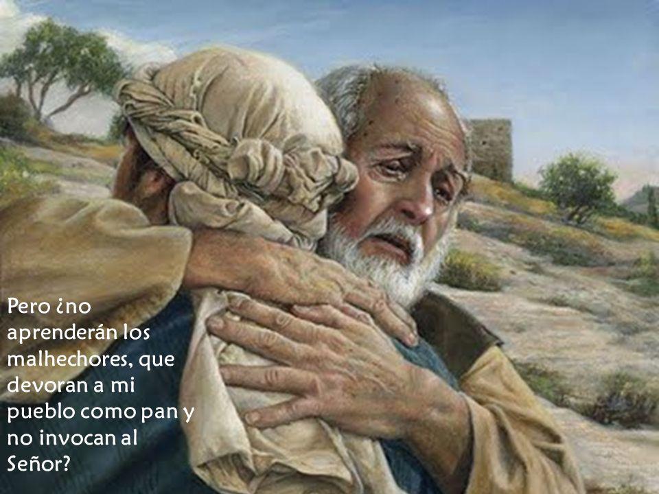 Pero ¿no aprenderán los malhechores, que devoran a mi pueblo como pan y no invocan al Señor