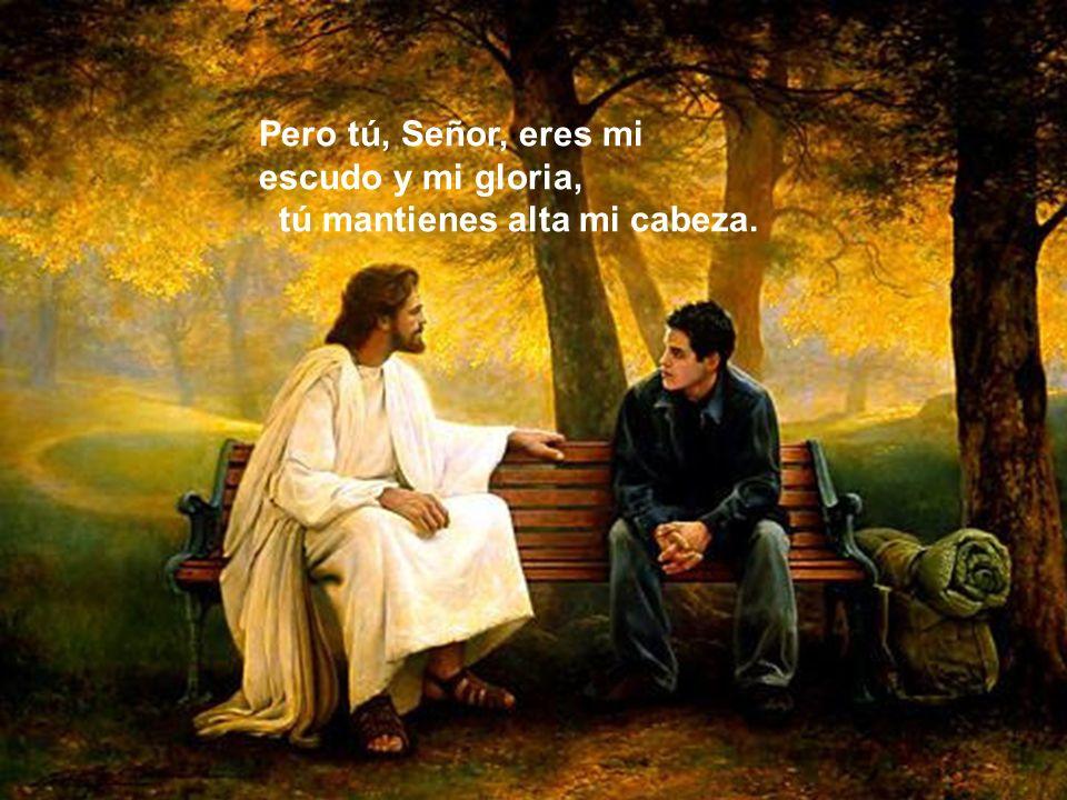 Pero tú, Señor, eres mi escudo y mi gloria,