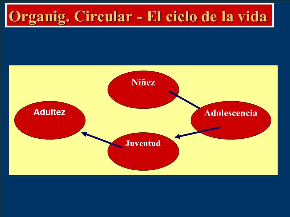 Organig. Circular - El ciclo de la vida