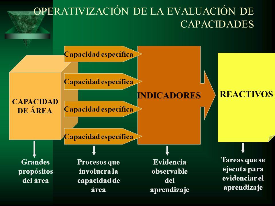 OPERATIVIZACIÓN DE LA EVALUACIÓN DE CAPACIDADES
